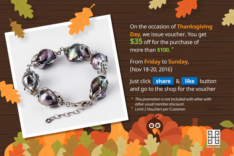 Thanksgiving 2016 Promotion